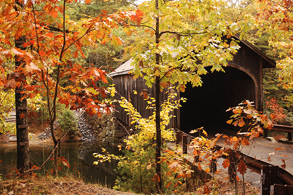 covered bridge in New England during the fall colors